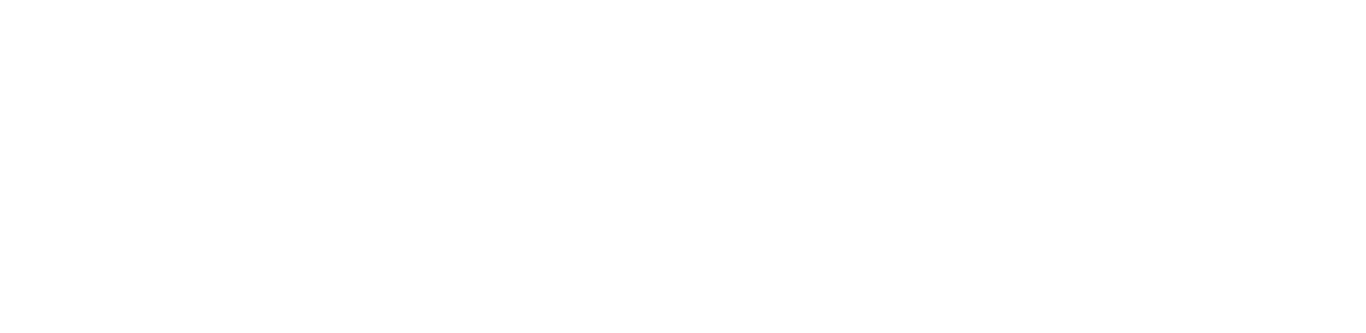 Value Lighting Inc The To